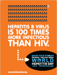 Hepatitis B virus is 100...